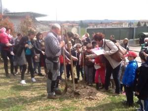 La festa degli alberi, raccontata sul Messaggero Veneto